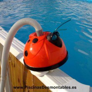 mariquita piscina (web)